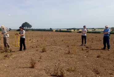 Owston Ferry Landscape Community Project – over halfway through!