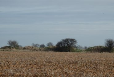 Surveying Lincolnshire's Long Barrows